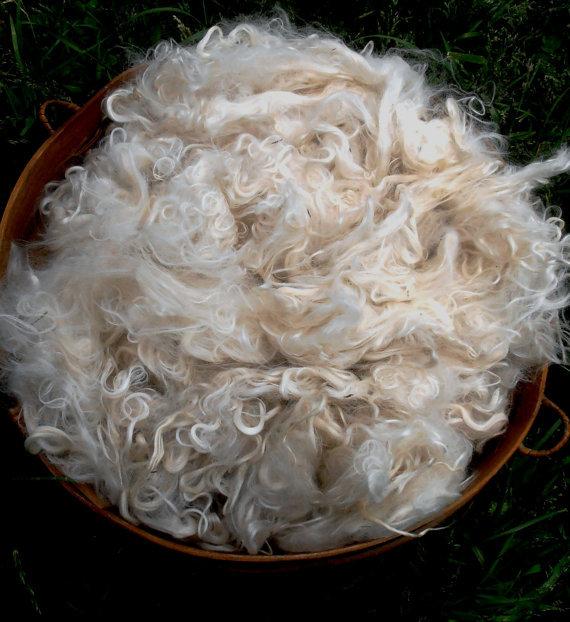 Suri Alpaca Fiber, 5 Inches, White, Shiya