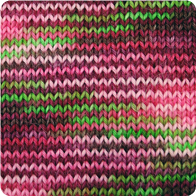 Alpaca and Superwash Wool Sock Yarn - Frog & Piggy