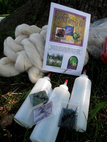 Roving Dye Kit
