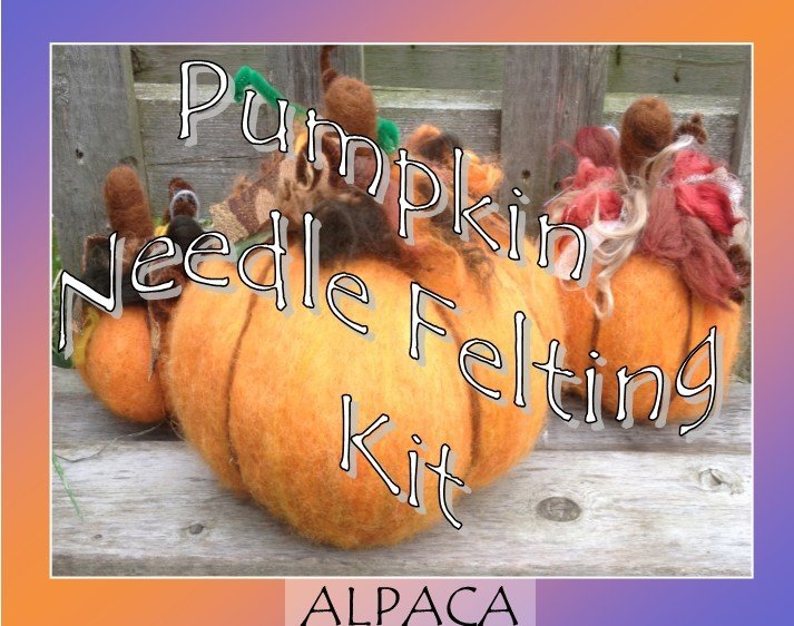 Pumpkin Needle Felting Kit 18133