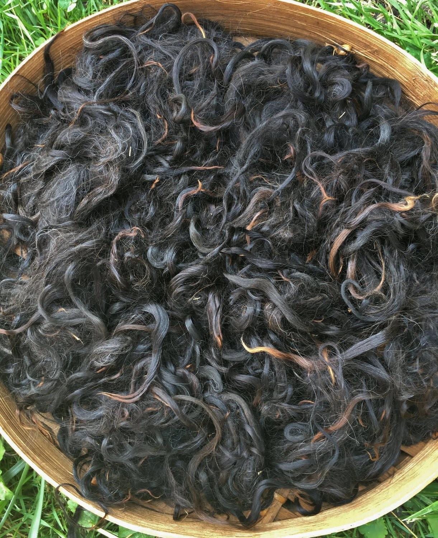 Suri Alpaca Fiber, 4-6 Inches, Black, Black Beauty