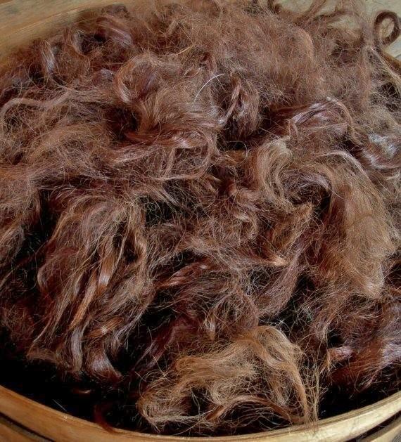 Suri Alpaca Fiber, 4 Inches, Medium Brown, Mabelle