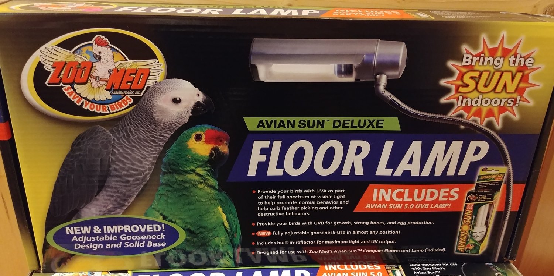Avian Floor Lamp w/bulb