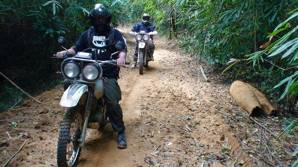 Vietnam 2019 Jungle_baby