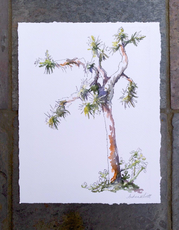 Joshua Tree Giclée Print 00009