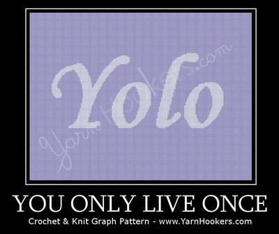YoLo - You Only Live Once - Afghan Crochet Graph Pattern Chart by Yarn Hookers.com
