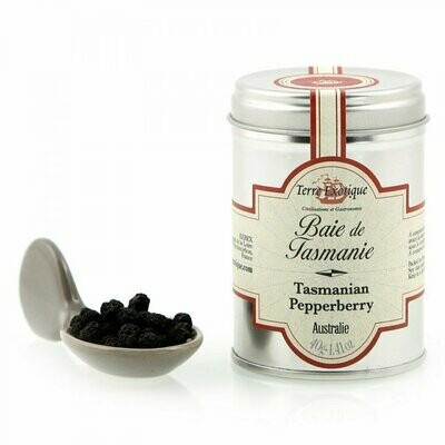 Tasmanian Pippuri (Australia) | Tasmanian Pepperberry | TERRE EXOTIQUE | 40 G