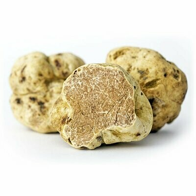 Alba Valkotryffeli (Tuber Magnatum Pico) | Fresh White Alba Truffle | 1 PCS (+10G)