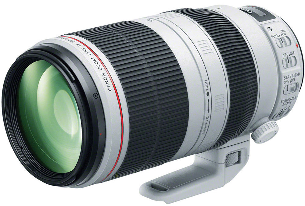 Canon EF 100-400mm f/4.5-5.6L IS 1147