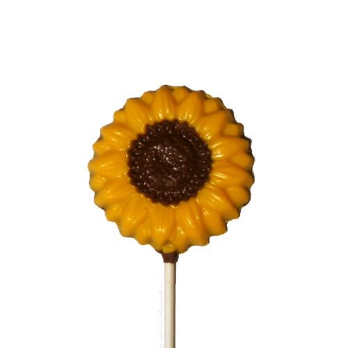 Sunflower W-326
