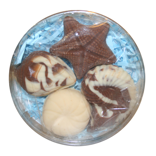 Chocolate Lollipops-Pollylops®-Shells in Round/Wholesale W-786