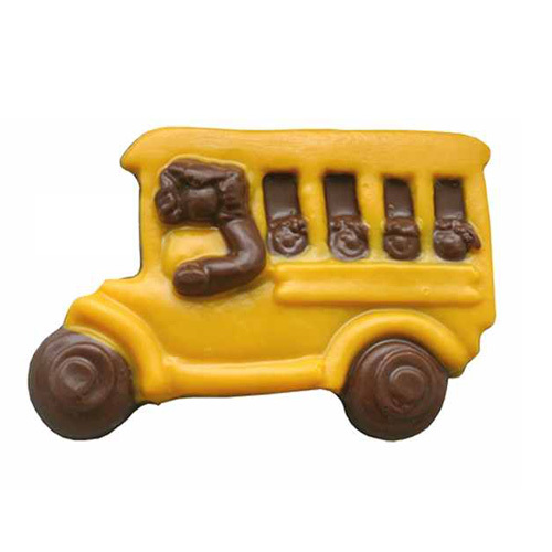 School Bus 806