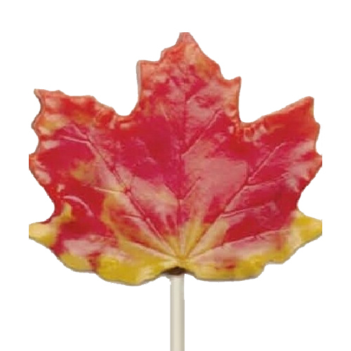 Maple Leaf 501