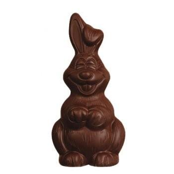 Rosengarten Organic Dark Chocolate Easter Bunny 80g