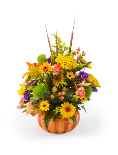 Pumpkin Patch Bouquet 030A31-6401