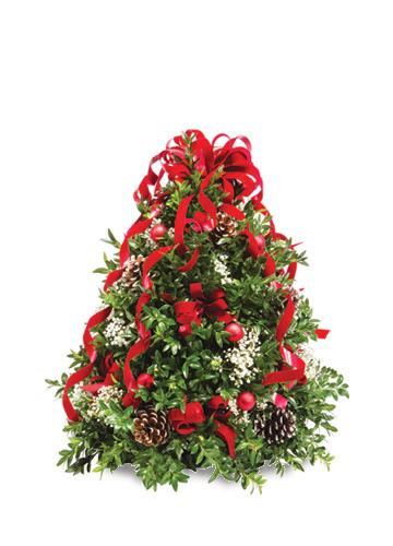Boxwood Christmas Tree 030A58-6401