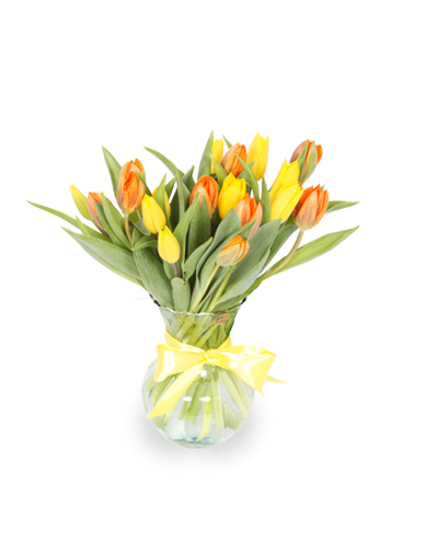 Spring Tulips 2 030A124-6401
