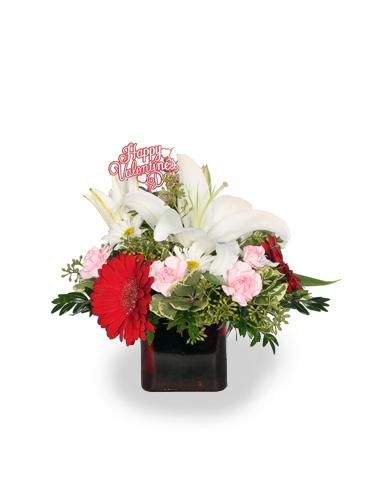 Love's Embrace 030A612-6401