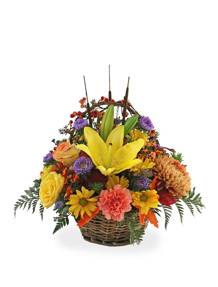 Twiggy Vine Basket 030A805-6401