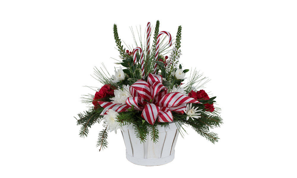 Candy Canes & Cheer 030A229-6401