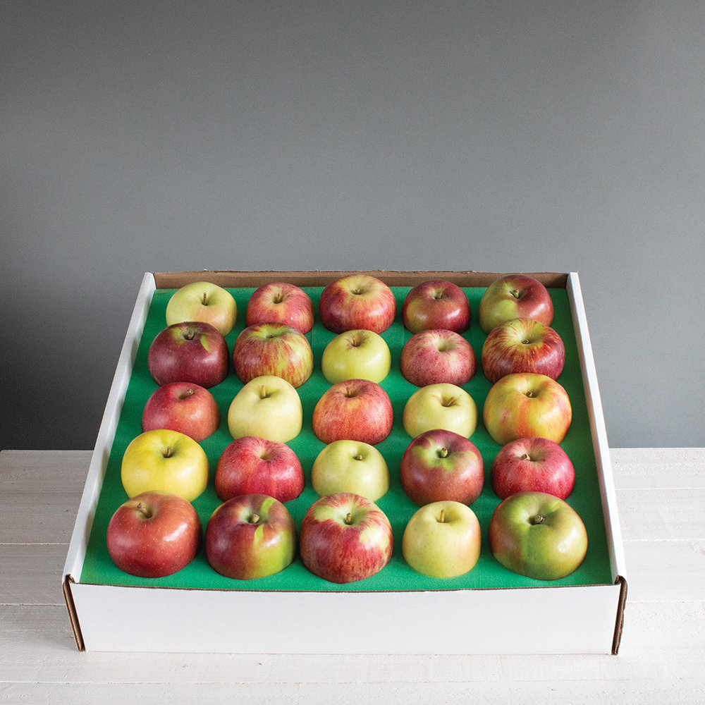 Just Apples 040A37-6426