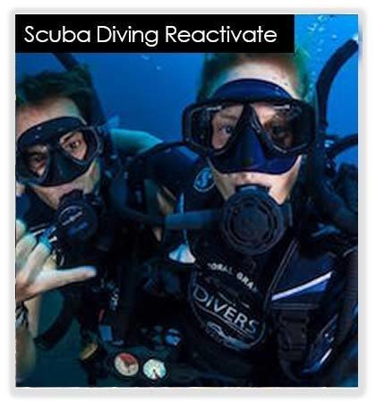 Refresh Dive 10049(base)