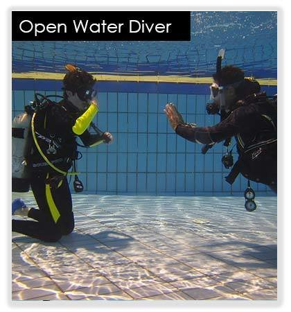 Open Water Diver 10073(base)