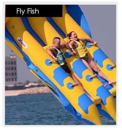 Fly Fish 10007