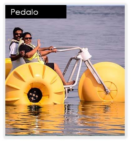 Pedal Boat 10039