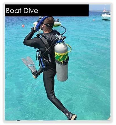 1 Boat Dive