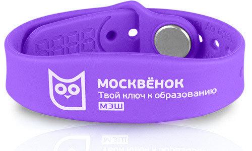 Браслет Москвёнок Пифагор NEW фиолетовый