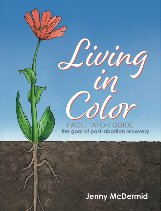 Living in Color Facilitators Guide (2nd edition) download 00004