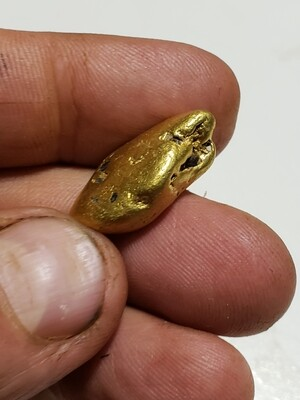 19.54 gram super dense gold nugget