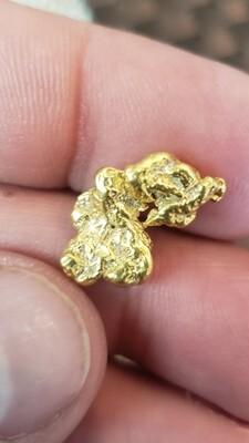 4.976 Gram Yukon gold nugget