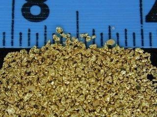 #25 Mesh Gold Dust - 1 gram of #25 gold 00006