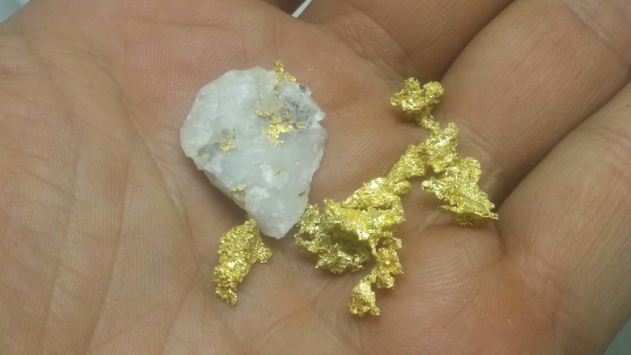 Worlds rarest paydirt - Colorado Quartz gold mine 00031