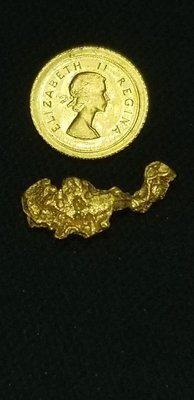 Huge gold nugget
