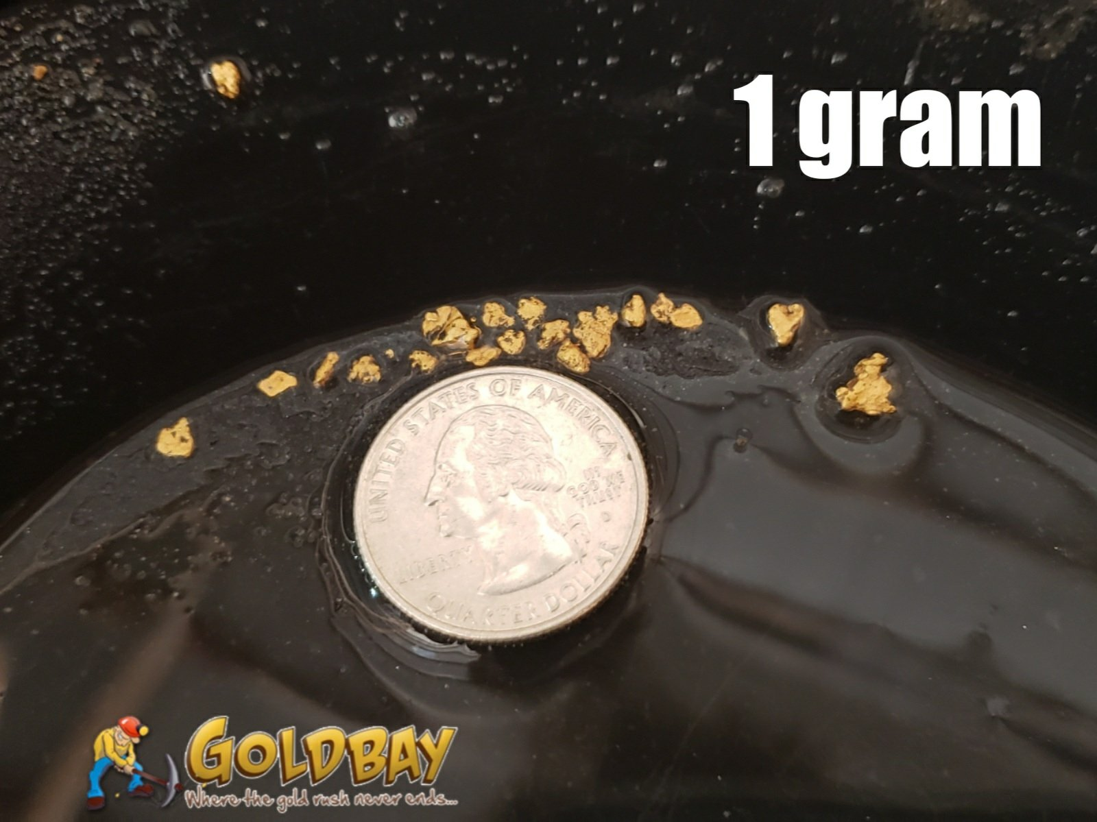 3# Pay Dirt - 1 gram Build a Bag paydirt - $49.95 per gram 00008