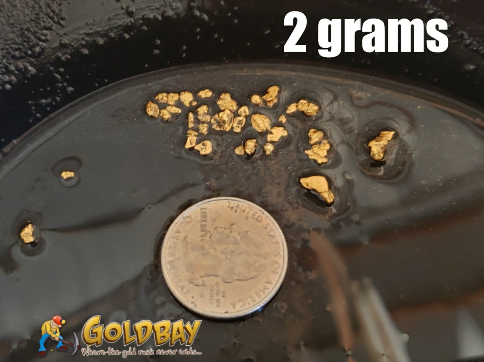 3# Pay Dirt - 1 gram Build a Bag paydirt - $49.95 per gram