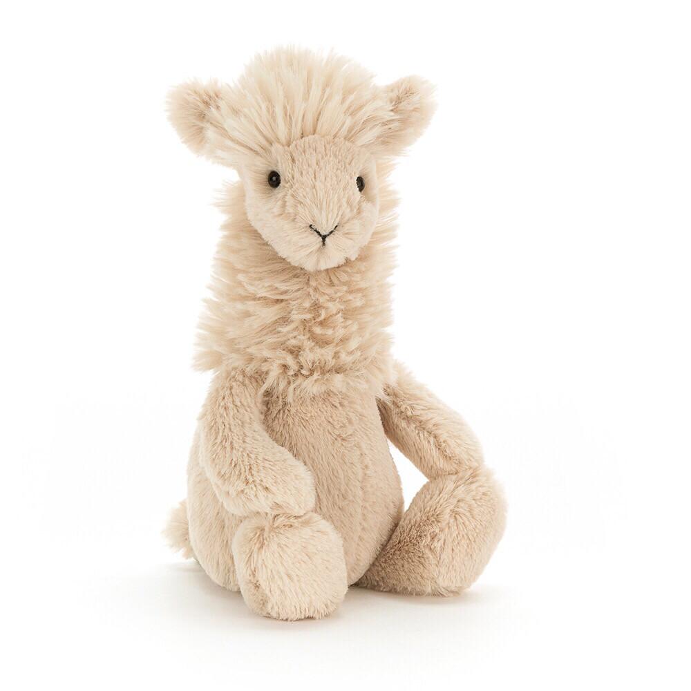 Small Bashful Lama