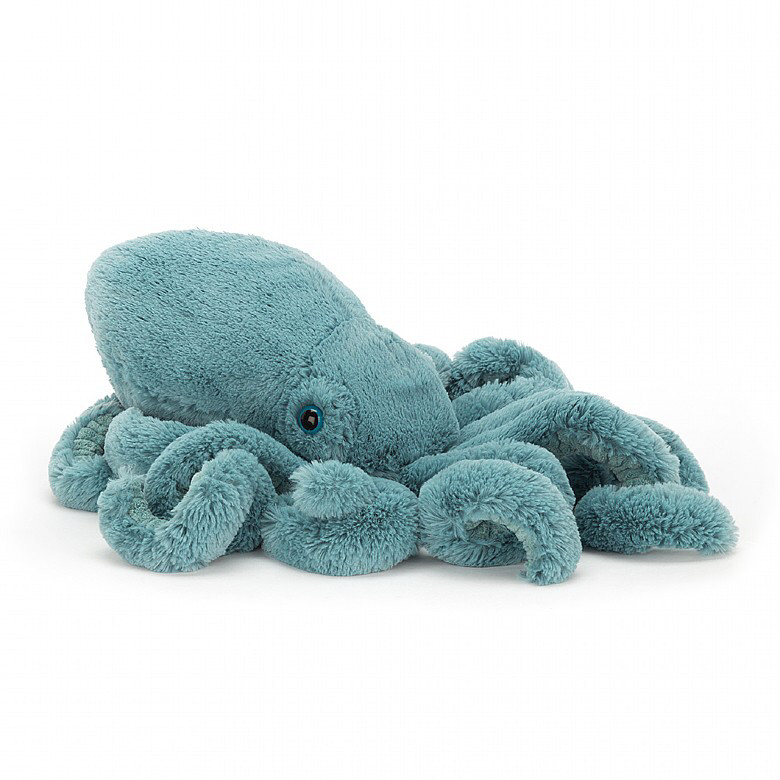 Small sol squid