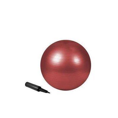 Zenzation 22in Exrcs Ball Red