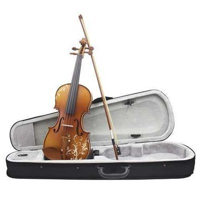 Aston 4/4  Spruce wood Carving Violin with Bow String Rosin Mute Case AV-30