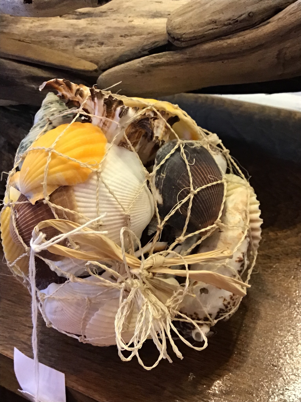 Net of shells
