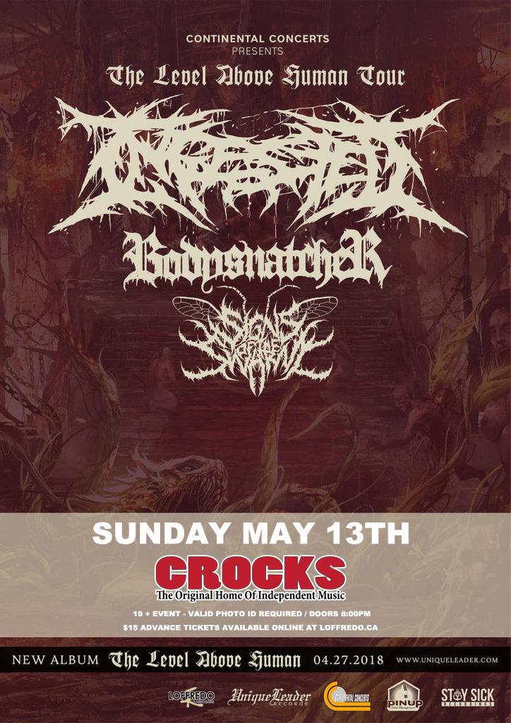 Ingested - Sunday May 13th at Crocks 00254