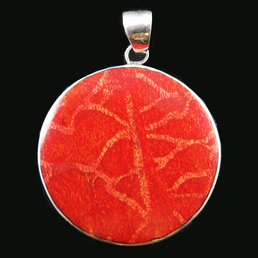Red Coral side 2