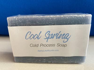 Cool Spring Scrub Soap Bar - 4.8oz