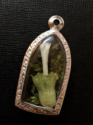 Toad Witch Amulet