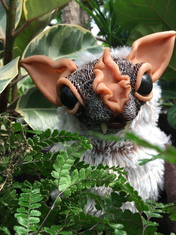 Leaf Nosed Bat