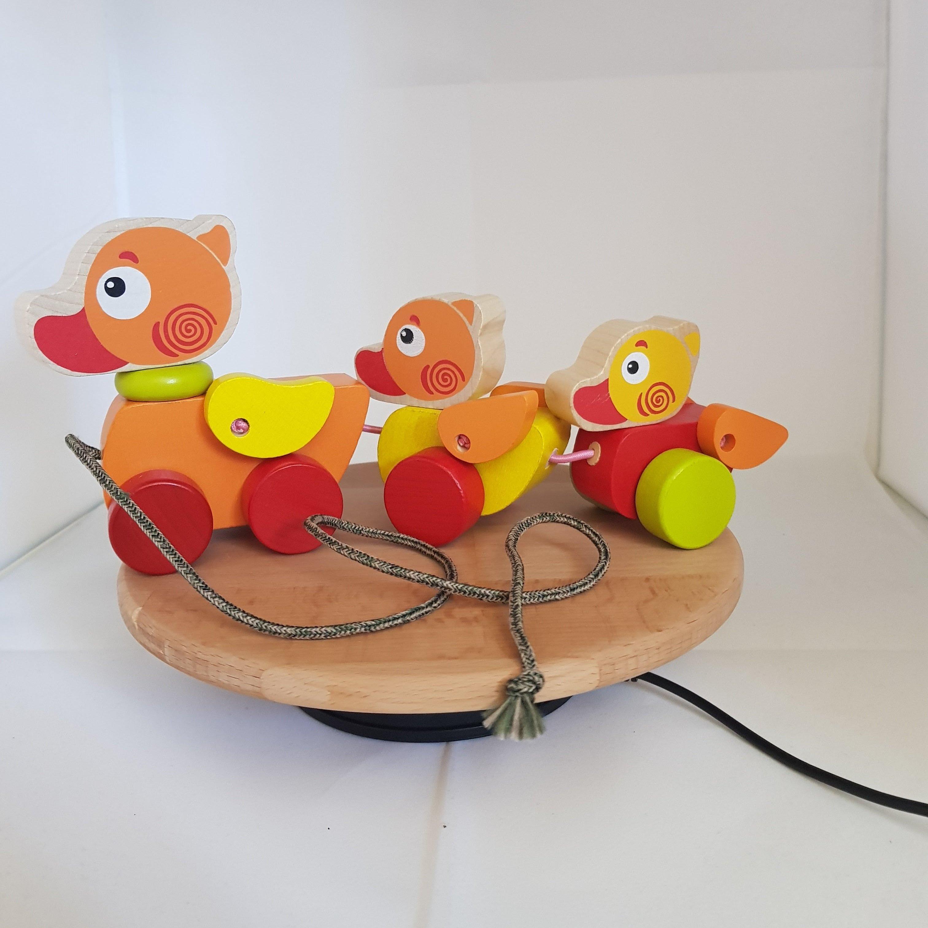 Duck Family 00029